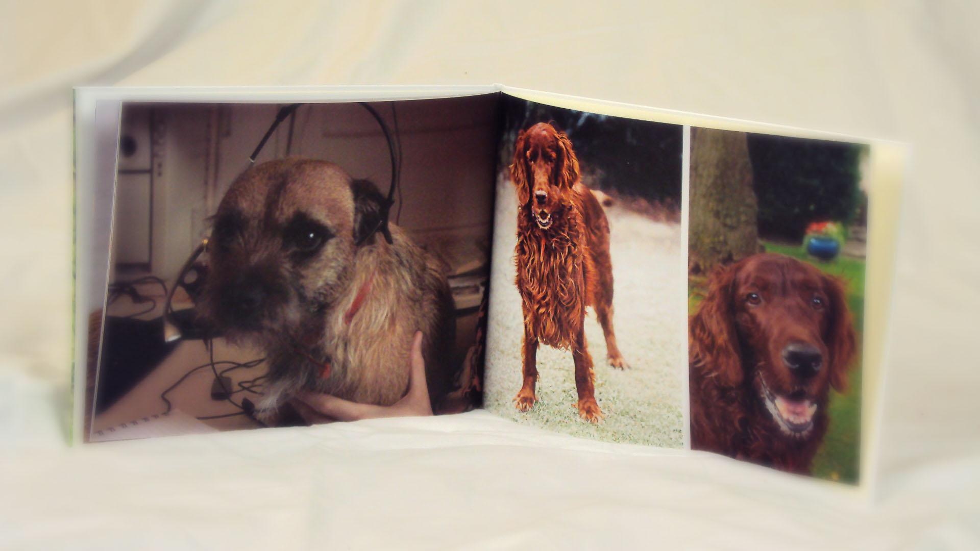 how to make a wedding photobook